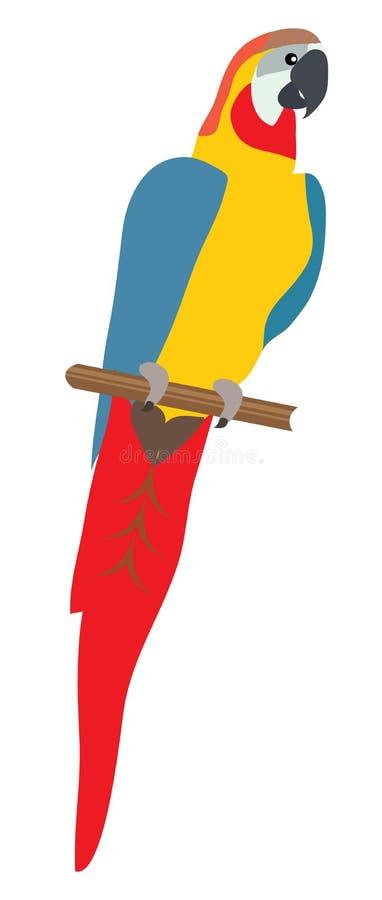 Иллюстрация попугая вектора изолированная на белой предпосылке иллюстрация штока