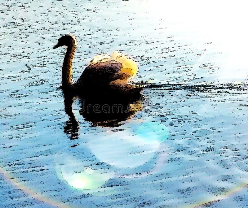 Иллюстрация природы Sunlit отражений лебедя мирная стоковое изображение