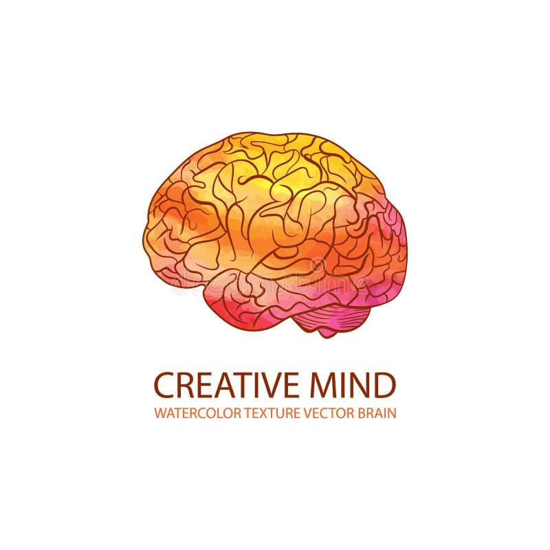 Иллюстрация разума вектора творческая, мозг градиента акварели красочный, шаблон логотипа иллюстрация вектора