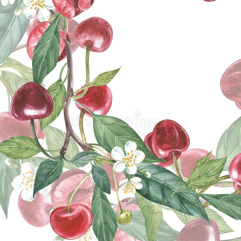 Иллюстрация рамки вишни ботаническая Дизайн карточки с цветками и лист вишни Иллюстрация акварели ботаническая иллюстрация вектора