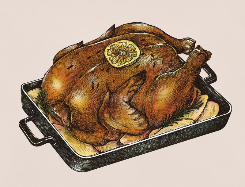 Иллюстрация сваренного цыпленка иллюстрация вектора