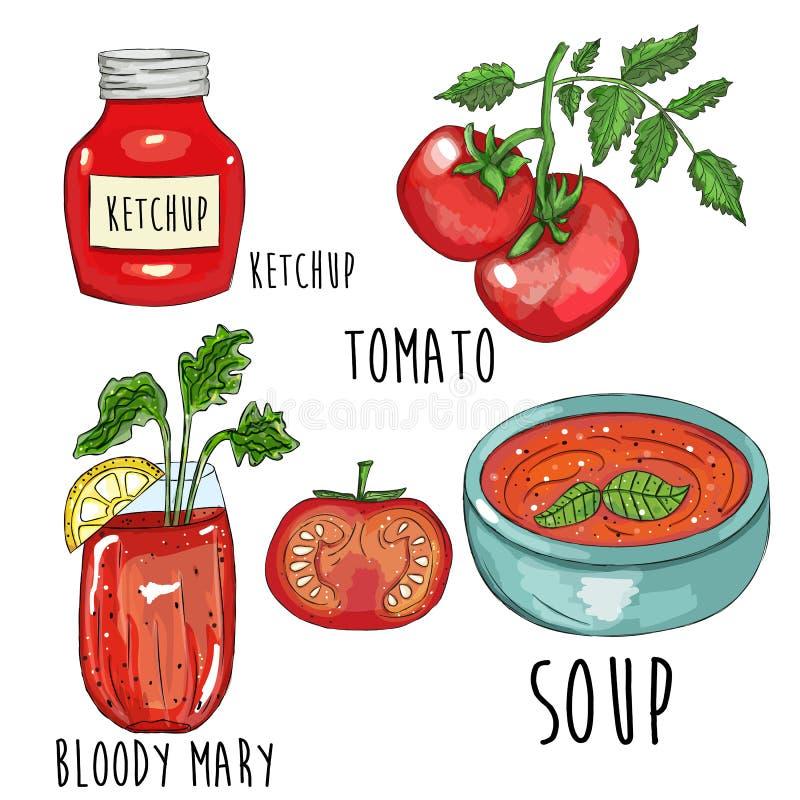 Иллюстрация собрания томата руки вычерченная бесплатная иллюстрация