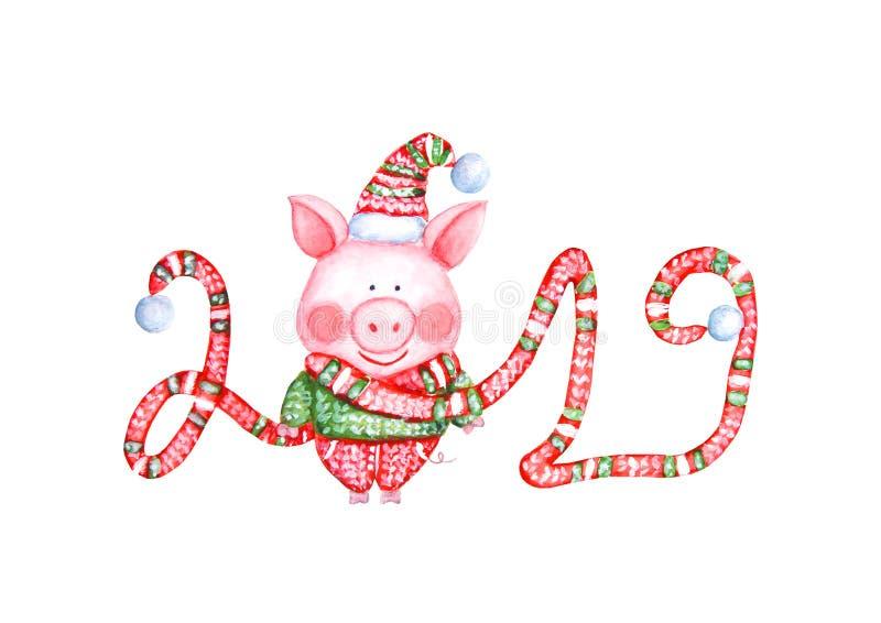 2019 иллюстрация С Новым Годом! и рождества со свиньей акварели смешной иллюстрация штока