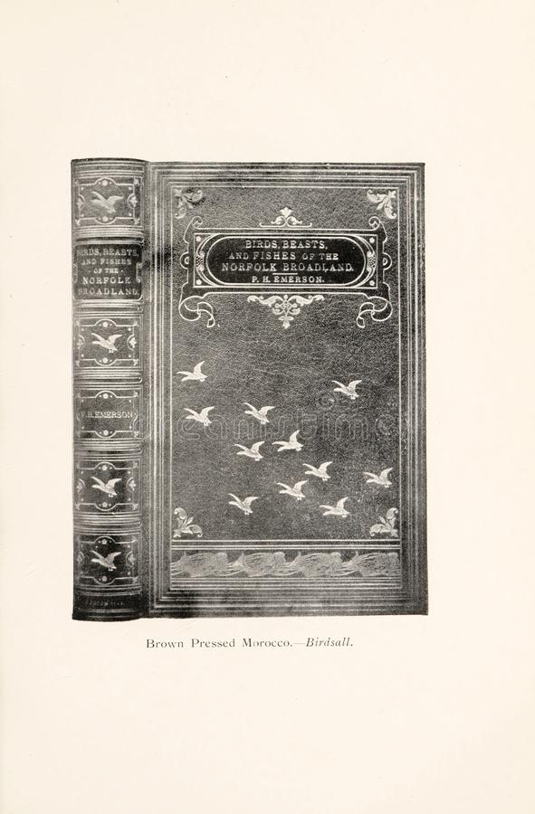 Иллюстрация Bookbinding стоковые изображения rf