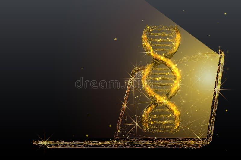 Иллюстрация wireframe генной инженерии низкая поли в металле золота иллюстрация вектора