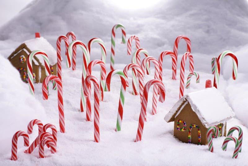 имбирь пущи коттеджей тросточки конфеты хлеба стоковые изображения