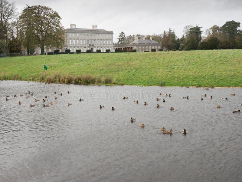 Имущество Castletown, Celbridge, Kildare, Ирландия стоковое изображение