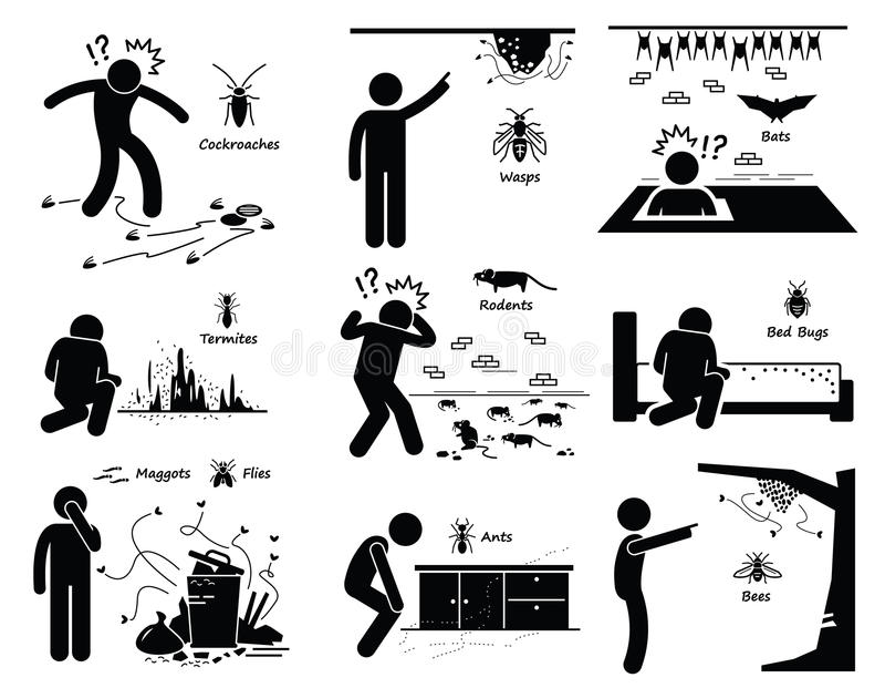 Инвазия гнезда Clipart бичей иллюстрация вектора