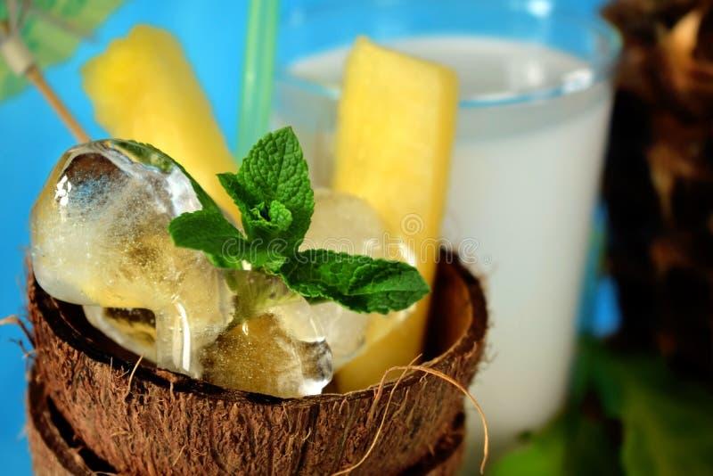 Ингридиенты для тропического коктеиля на голубой предпосылке стоковая фотография rf