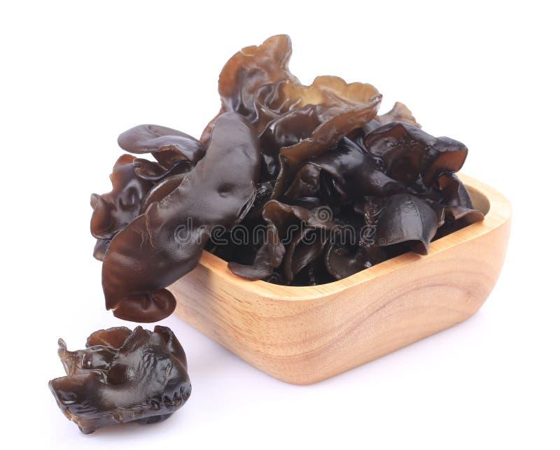ингридиент бакалеи etc черной варки adv грибной другие серия ресторана для adv etc ресторана, бакалеи, и других стоковая фотография