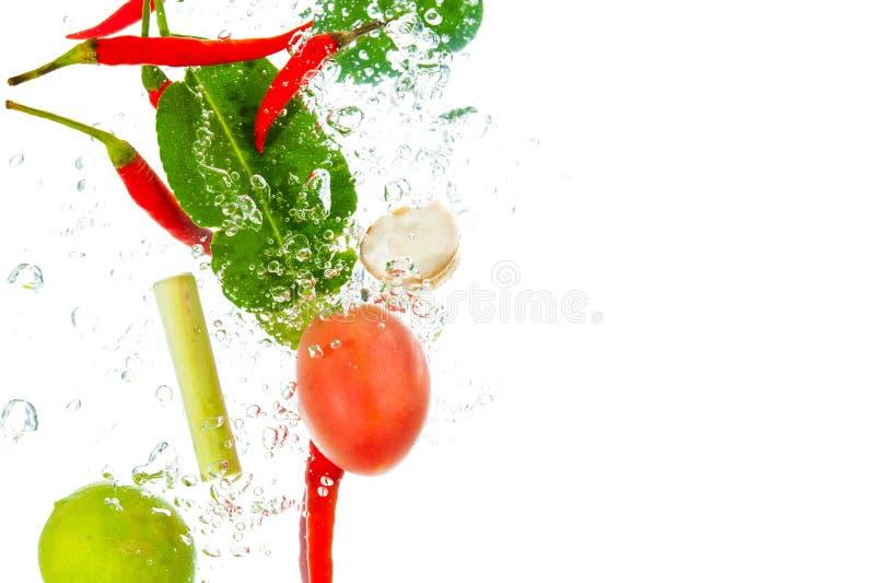 Ингридиенты супа Тома Yum стоковые изображения