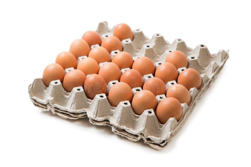 Ингридиент панели пакета яичек подготавливает для еды в isolateggs ресторана ингридиент панели пакета подготавливает для еды в из стоковое фото