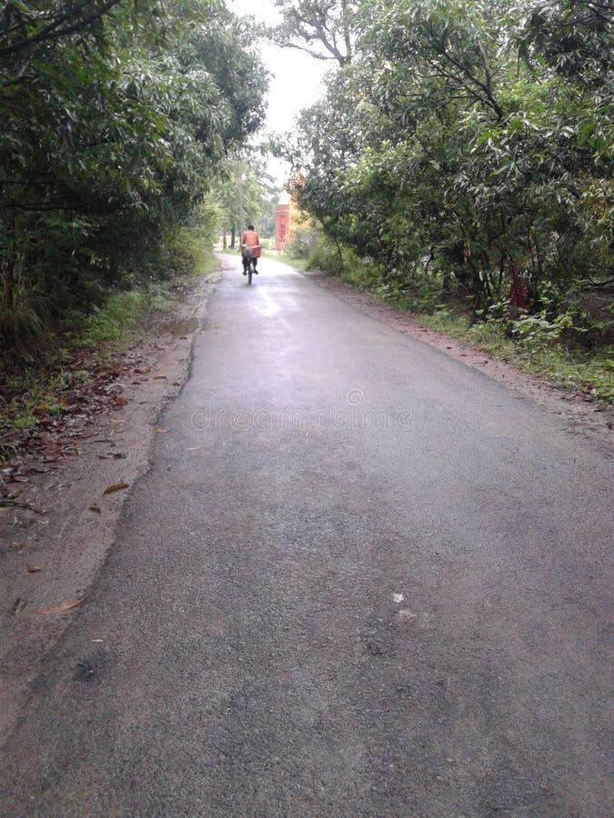 Индийская дорога деревни между садом стоковые фотографии rf