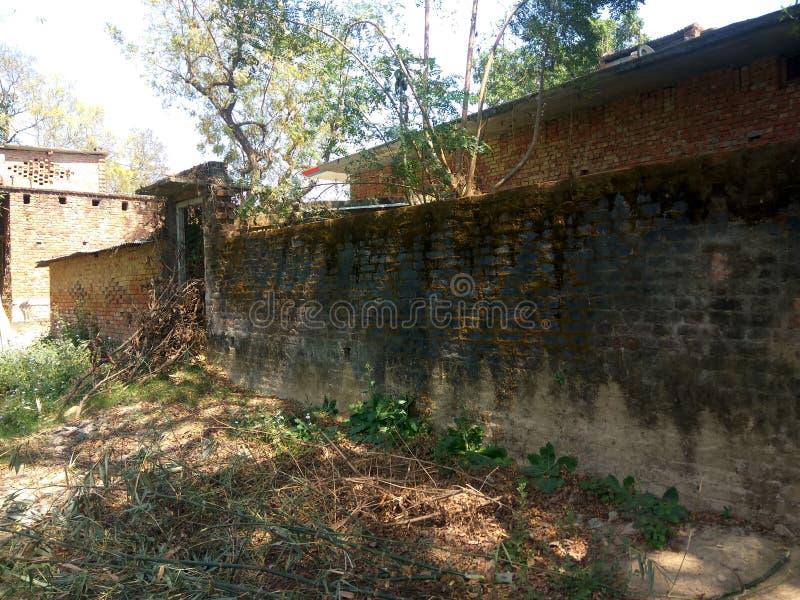 Индийская задворк деревни стоковое изображение