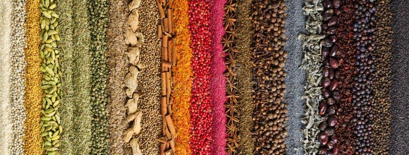 Индийские специи и предпосылка трав красочная приправа, взгляд сверху стоковое изображение rf