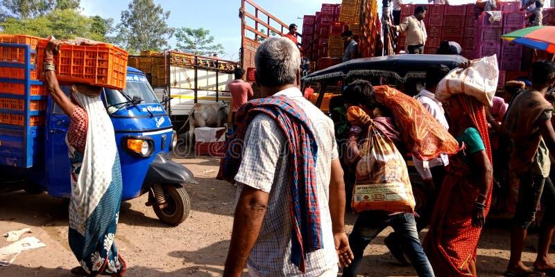 Индийские фермеры толпятся на рынке овоща оптовом стоковые изображения rf