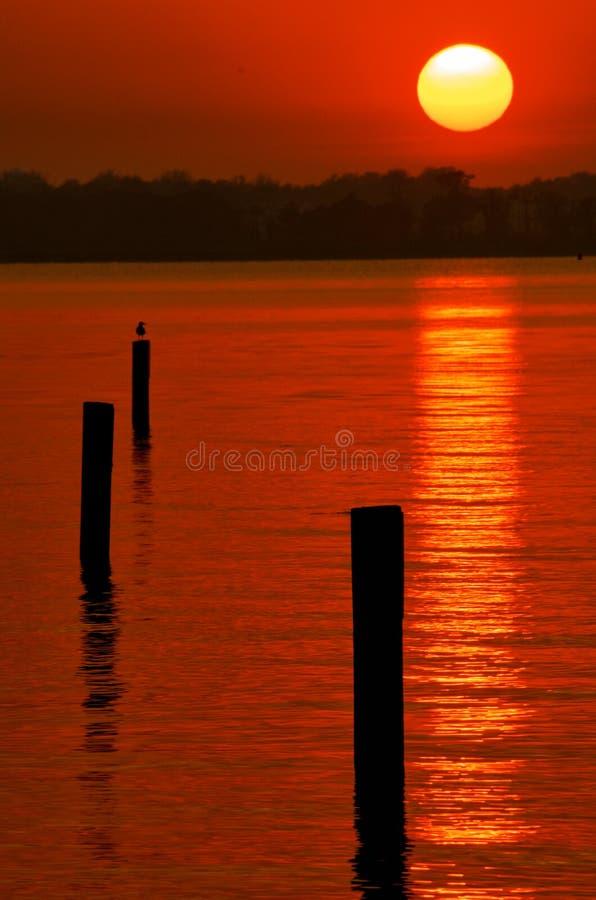 индийский заход солнца реки стоковые изображения rf