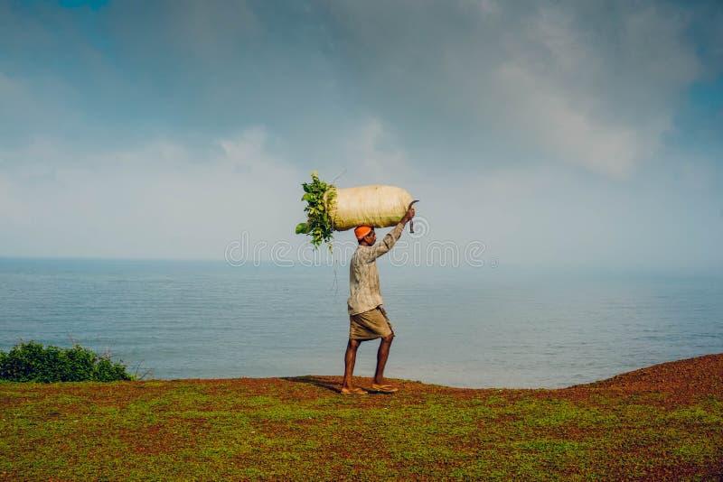 Индийский человек нося сумку сжатых урожаев стоковое изображение rf