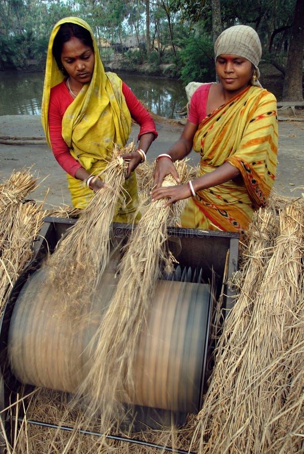 Download индийское село жизни редакционное стоковое изображение. изображение насчитывающей здоровье - 18375699