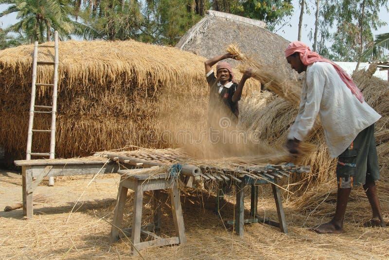 Download индийское село редакционное изображение. изображение насчитывающей западно - 18375505