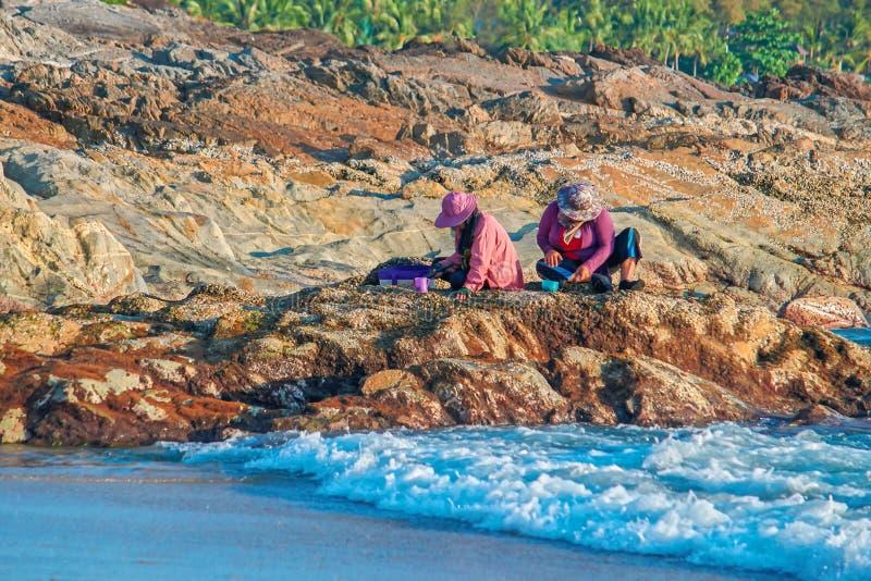 Индонезийские женщины сортируют удя задвижку путем сидеть на утесе морем в вечере черный прибой Украина моря Крыма свободного пол стоковое фото rf