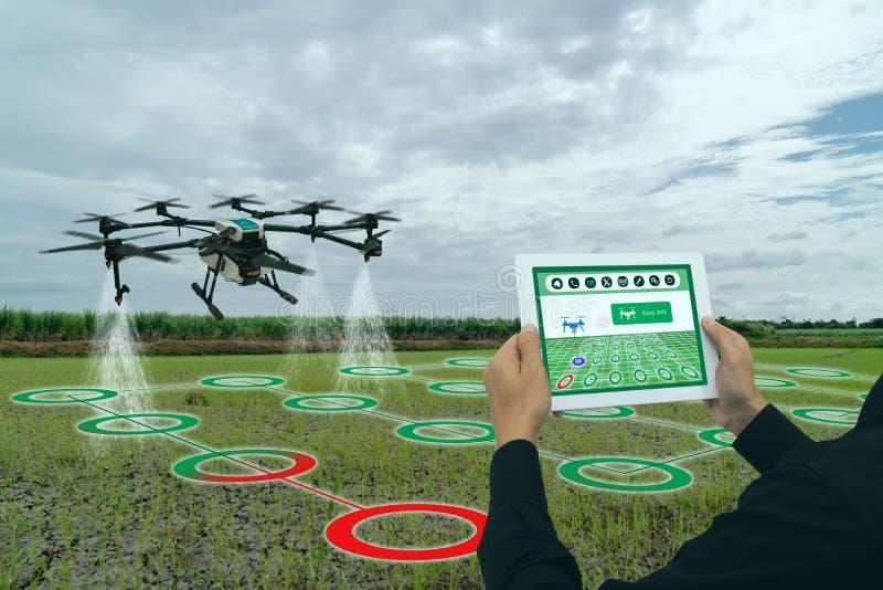 Индустрия 4 земледелия Iot умная 0 концепций, трутень в пользе фермы точности для брызга вода, удобрение или химикат к полю, стоковая фотография