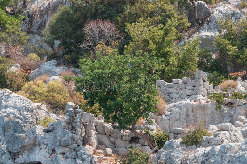 индюк среднеземноморские coastRuins древнего города Kekova разрушенные землетрясением стоковое изображение rf