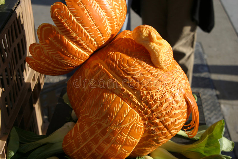 индюк тыквы стоковые фото