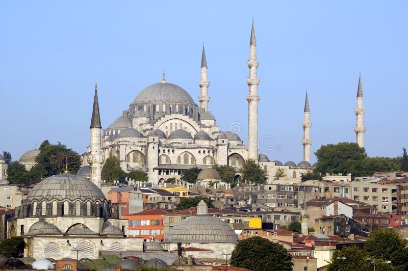 индюк istanbul стоковое фото rf