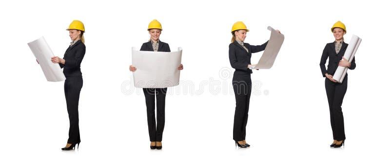 Инженер женщины с проектами документа стоковые изображения