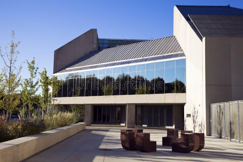институт chicago искусства стоковое изображение