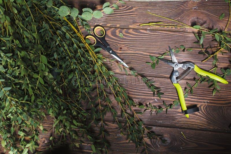 Инструменты для флористов и цветков стоковые фото