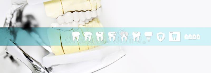 Инструмент сочленителя концепции зубоврачебного техника с значками зубов и бесплатная иллюстрация
