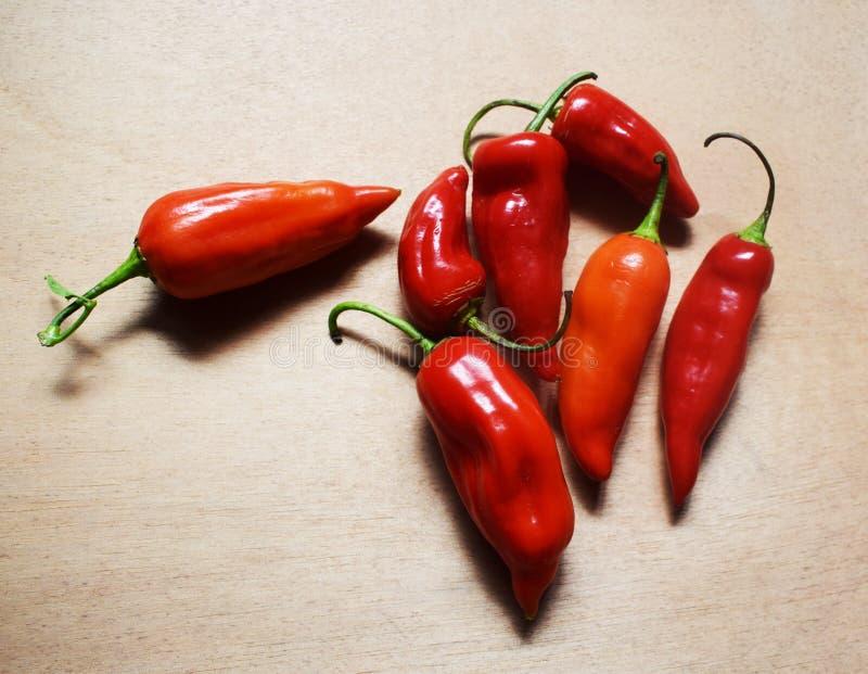 Интенсивные красные перцы стоковые фото