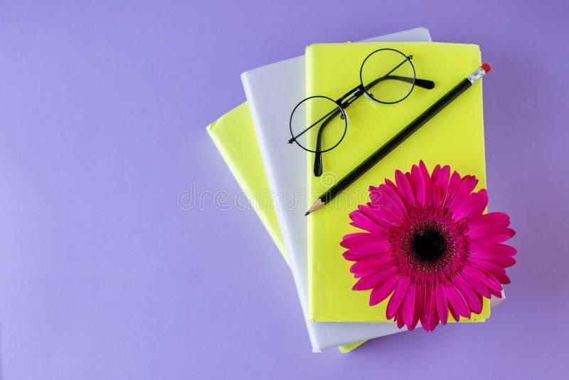 Интересные книги, карандаш и стекла и цветок чтения Задняя часть в школу, образование концепции, международный день книги стоковая фотография