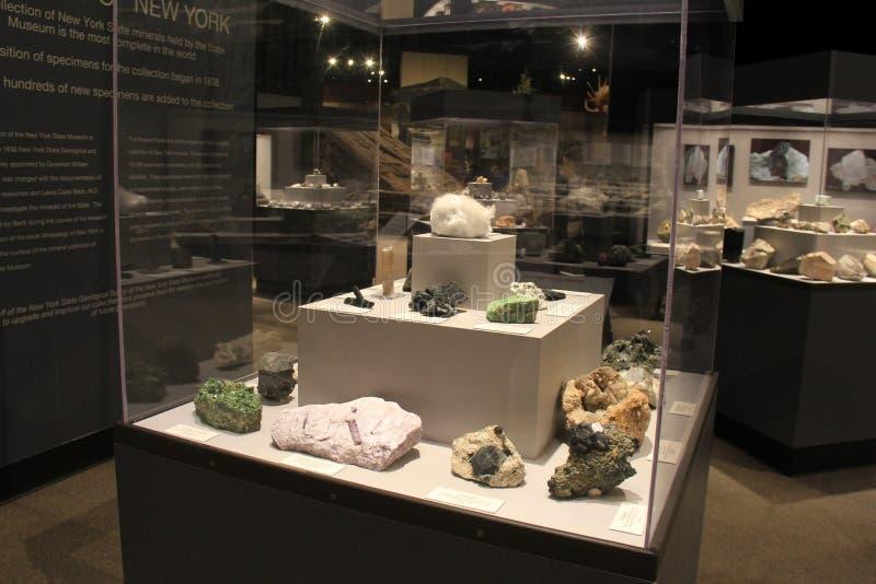 Интересный экспонат обширных геологохимических открытий в стеклянных случаях, музей положения, Albany, Нью-Йорк, 2017 стоковое изображение rf