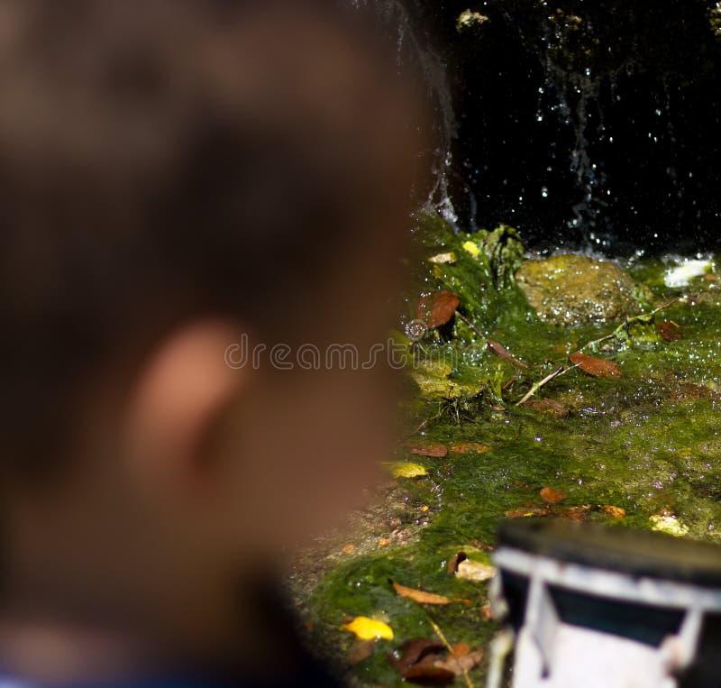 Интересы мальчика стоковое изображение rf