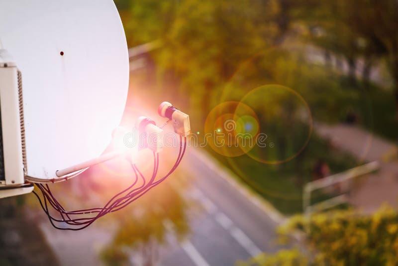 Интернет, спутник, социальные сети, спутниковая антенна-тарелка, сигналы, ТВ, связывает, современный, метрополия, сеть, сети, обо стоковое фото rf