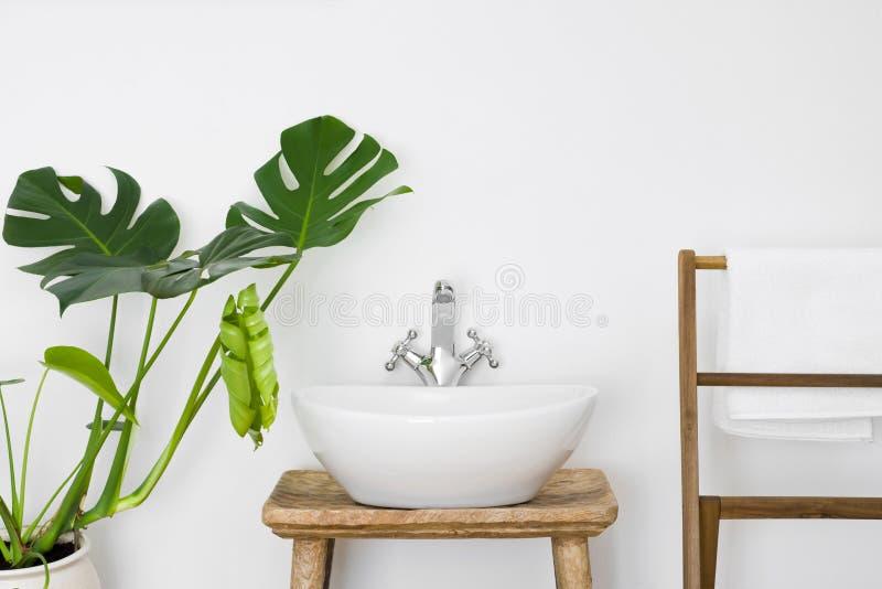Интерьер ванной комнаты с белыми раковиной, вешалкой полотенца и зеленым растением стоковая фотография