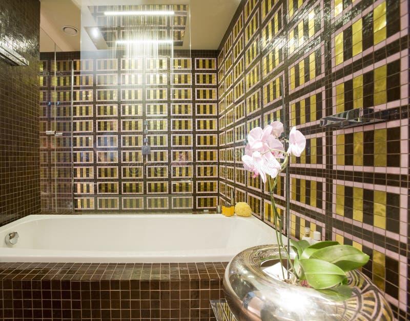 Download интерьер ванной комнаты стоковое изображение. изображение насчитывающей афоризмов - 18377927