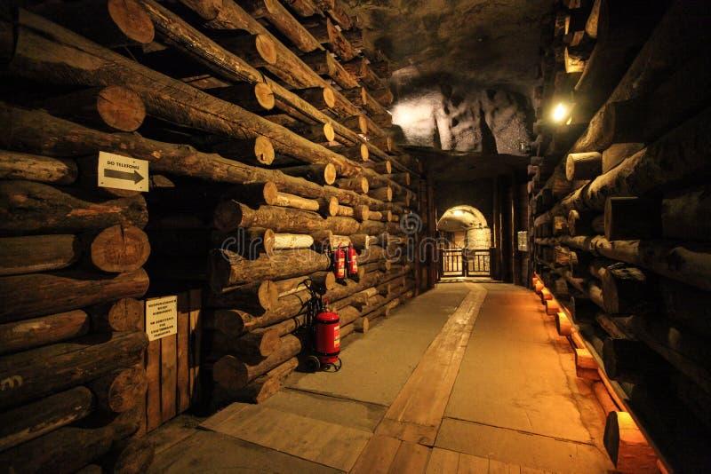 Интерьер в солевых рудниках в Wieliczka стоковые фотографии rf