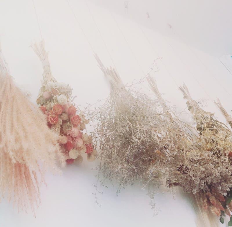 Интерьер кафа на цветках смертной казни через повешение стены стоковая фотография rf