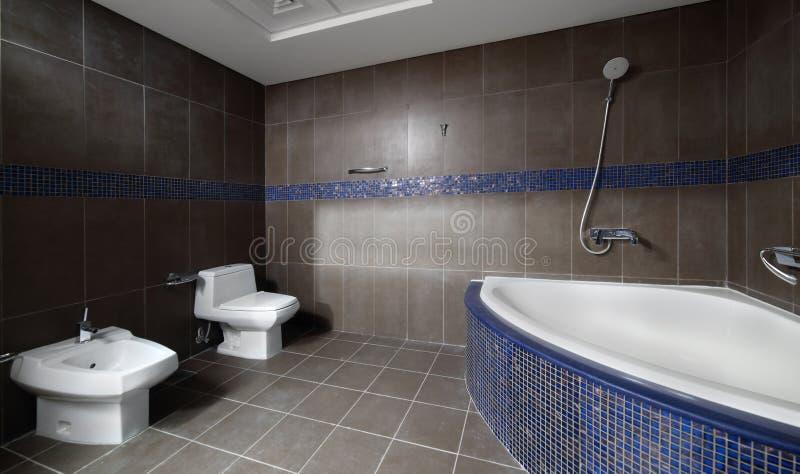 Download Интерьер современного туалета в европейском стиле Стоковое Фото - изображение насчитывающей интерьеры, приватно: 40575324