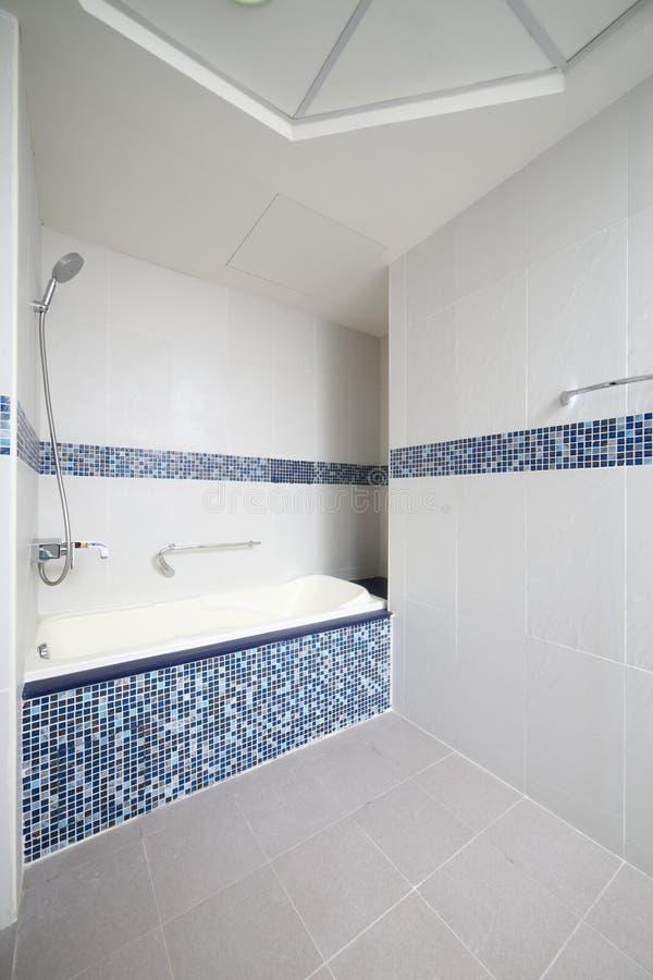 Download Интерьер современного туалета в европейском стиле Стоковое Фото - изображение насчитывающей шикарно, клуб: 40575516