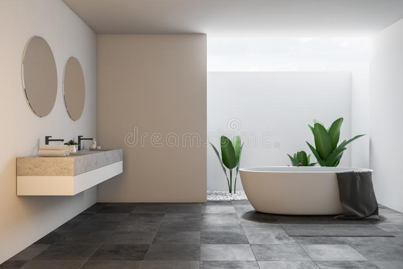 Интерьер, ушат и раковина ванной комнаты просторной квартиры большие белые иллюстрация штока