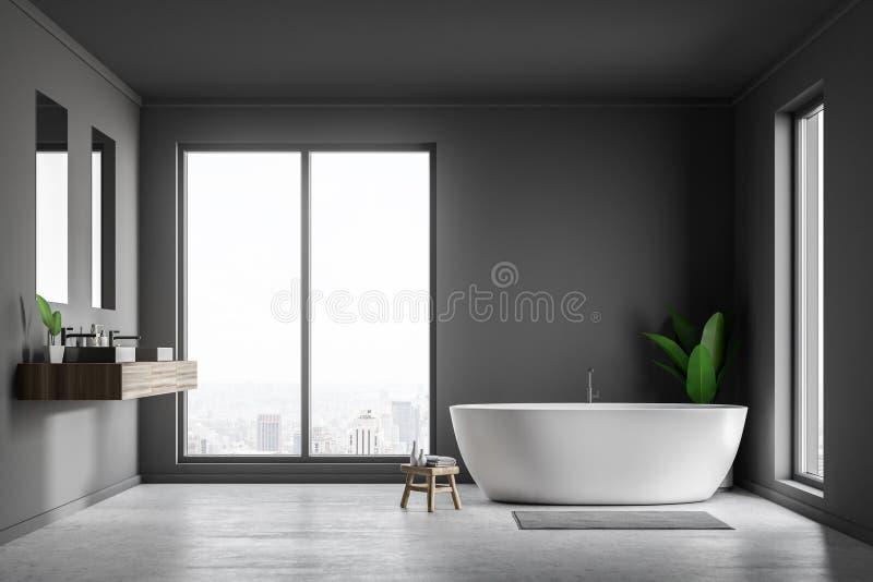 Интерьер, ушат и раковина bathroom просторной квартиры серые бесплатная иллюстрация