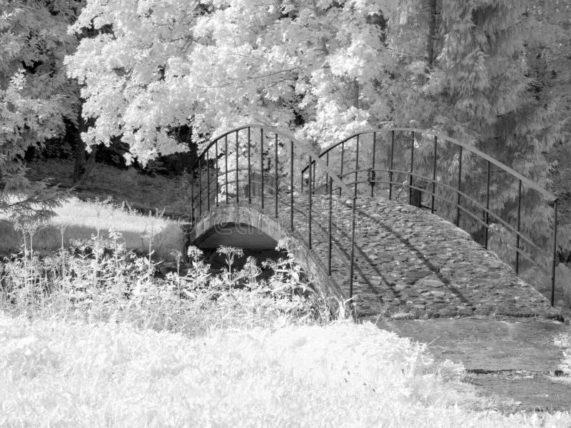 Инфракрасная фотография с видом на реку и красивым мостом, фото сделано с специально оборудованной инфракрасной камерой стоковые изображения