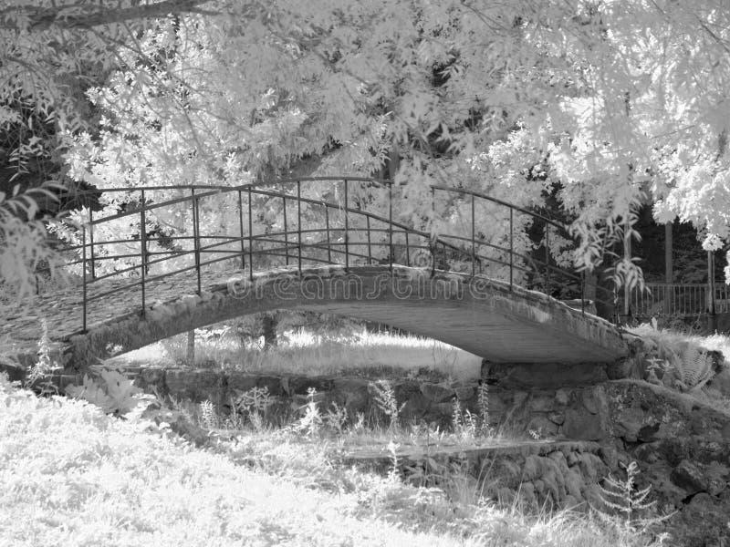 Инфракрасная фотография с видом на реку и красивым мостом, фото сделано с специально оборудованной инфракрасной камерой стоковые фотографии rf