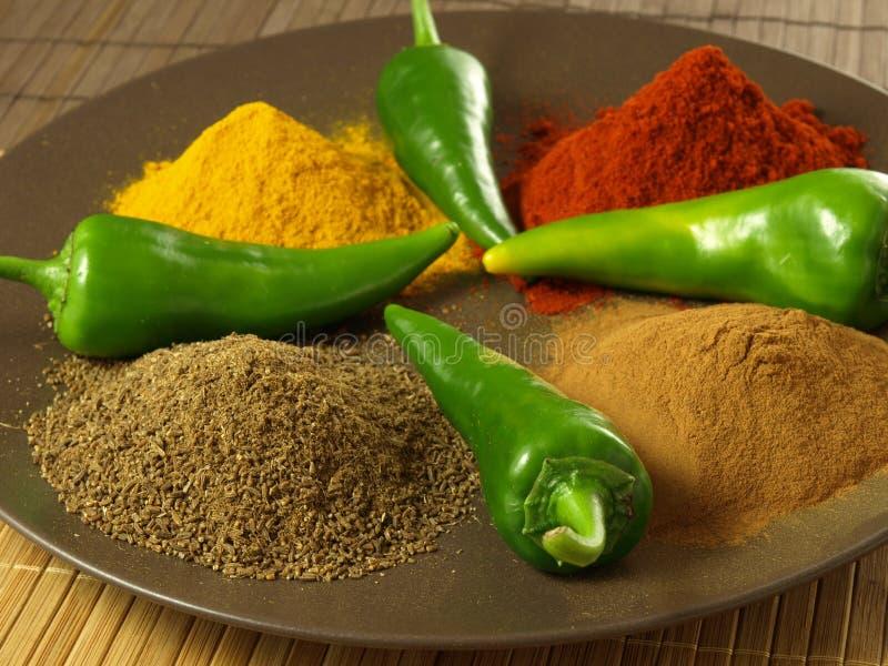 Индийская кухня стоковое фото