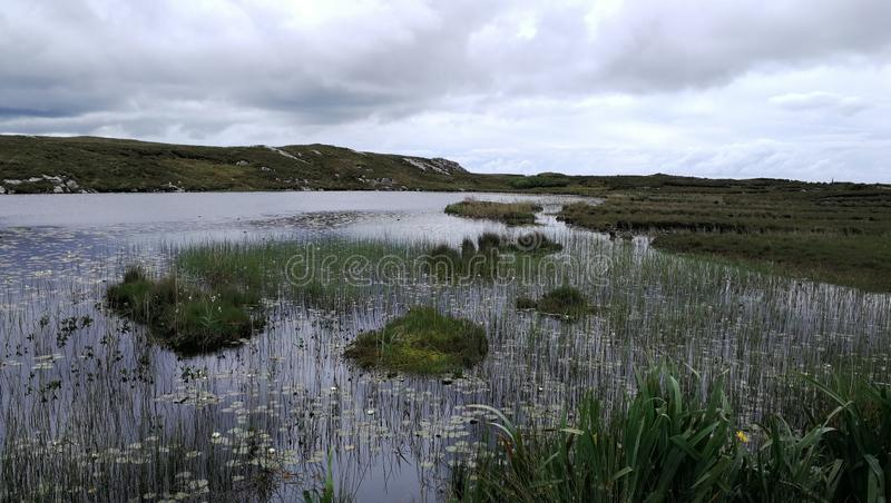 Ирландский дождь шторма стоковое фото rf